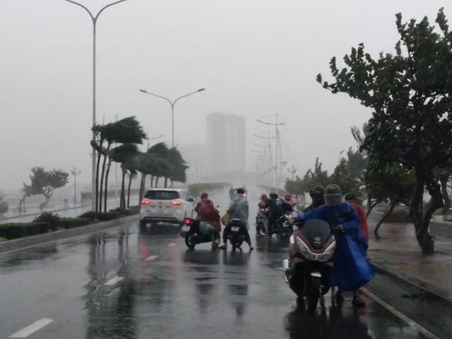Bão số 12 gây mưa to và gió rất mạnh tại khu vực huyện Vạn Ninh, Khánh Hòa.