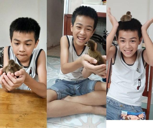 Từ ngày có vịt chơi cùng, con trai của Huỳnh Ngân không còn thích xem tivi nữa và coi vịt như người bạn thân thiết Ảnh: NVCC