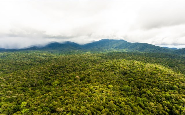 Khu bảo tồn thiên nhiên Nâm Nung trong Công viên địa chất toàn cầu Đắk Nông.(Nguồn: Daknonggeopark).