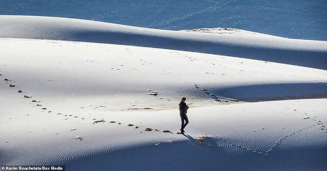 Sa mạc Sahara phủ đầy băng tuyết. Ảnh: Bav Media.