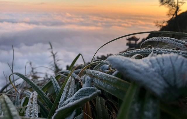 Bắc Bộ tiếp tục rét đậm, vùng núi có nơi băng giá và sương muối - Ảnh 1