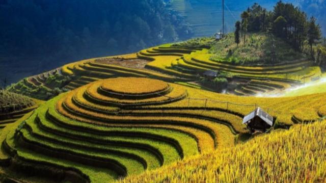 10 sự kiện nổi bật của tỉnh Yên Bái năm 2020 - Ảnh 5