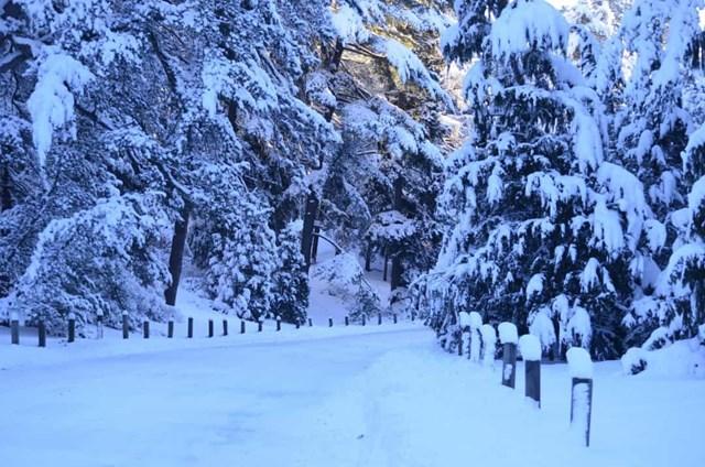 Những nơi tuyết rơi nhiều nhất trên trái đất - Ảnh 18