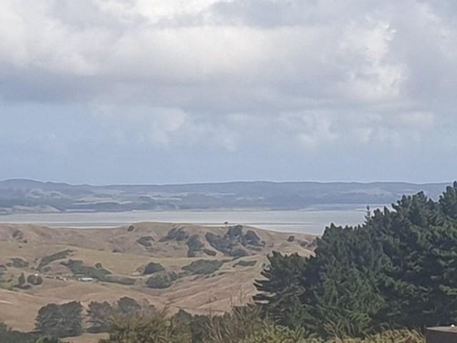 Mực nước thấp bất thường ở cảng Kaipara, New Zealand. Ảnh: Twitter/Rachel Cunlife.