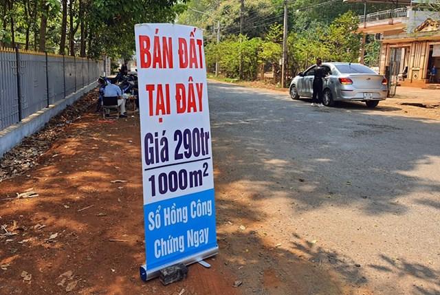 Một điểm giao dịch mua bán đất tại xã An Khương (huyện Hớn Quản, Bình Phước). Ảnh: Phước Tuấn.