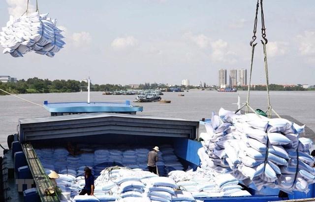 Bốc xếp gạo xuất khẩu tại cảng TP HCM.