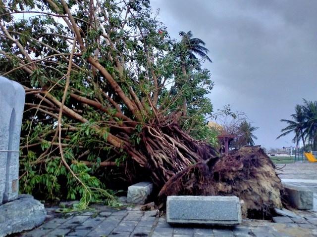 Hội An, Tam Kỳ tan hoang, Quảng Ngãi tốc mái, hư hỏng hàng chục nghìn nhà - Ảnh 1