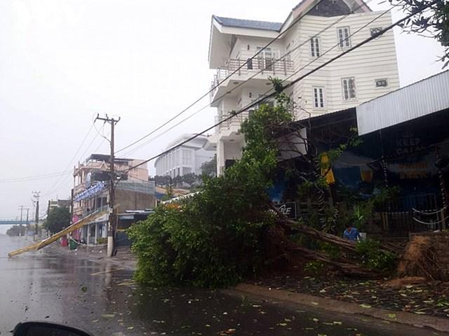 Bão số 12 làm nghiêng đổ cây, cột điện, nhà bị tốc mái.