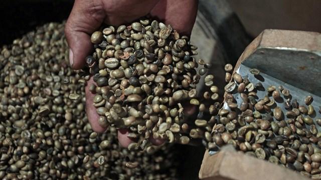Xuất khẩu cà phê của Brazil tăng cao kỷ lục - Ảnh 1