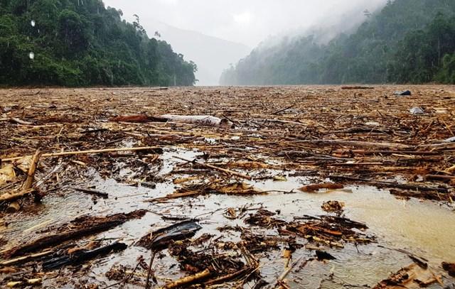 Gỗ tràn ngập trên lòng hồ thủy điện Sông Tranh 2.