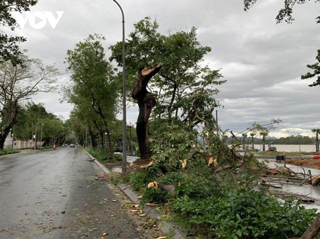Từ 1h sáng 15/11, tại Đà Nẵng mưa nhỏ, gió giảm dần.