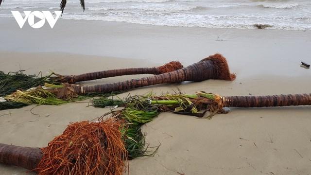 Bãi biển Mỹ Khê sau bão số 13.