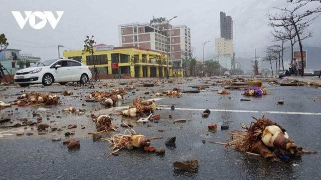 Đà Nẵng sau một đêm 'đón' bão số 13 - Ảnh 4