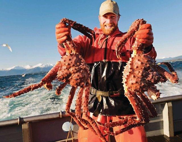 Cua hoàng đế Alaska được ví như món hải sản cực phẩm.