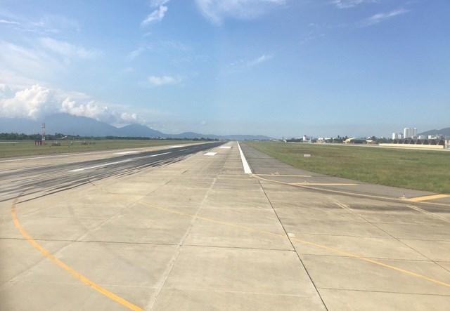 Đàn trâu có 6 con của một hộ dân gần Cảng Hàng không quốc tế Cát Bi (TP Hải Phòng) được thả ngay khu vực bảo hiểm đường lăn tiềm ẩn nguy cơ mất an toàn khu vực sân bay.