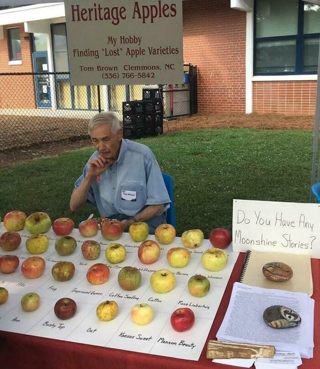 Bộ sưu tập các loại táo bị mất của người đàn ông này.