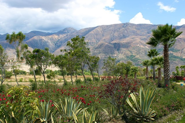 Cao nguyên tuyệt đẹp của Peru, ẩn chứa một mất mát khủng khiếp.