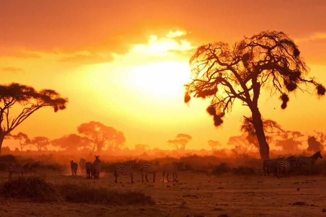 Châu Phi: Khám phá những thắng cảnh ngoạn mục - Ảnh 16