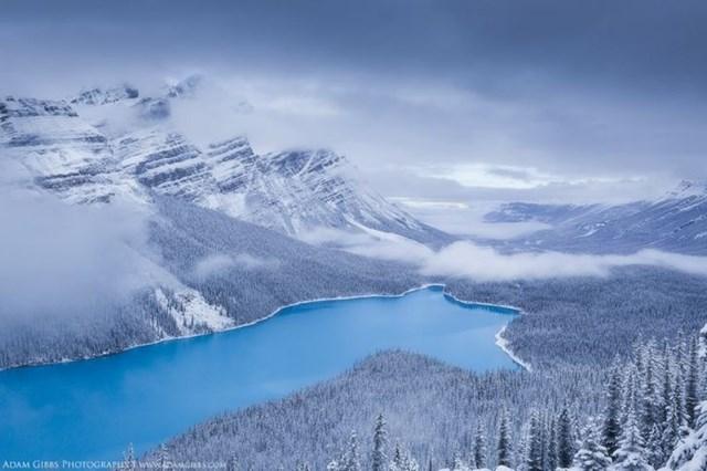 Hồ Peyto, Canada.