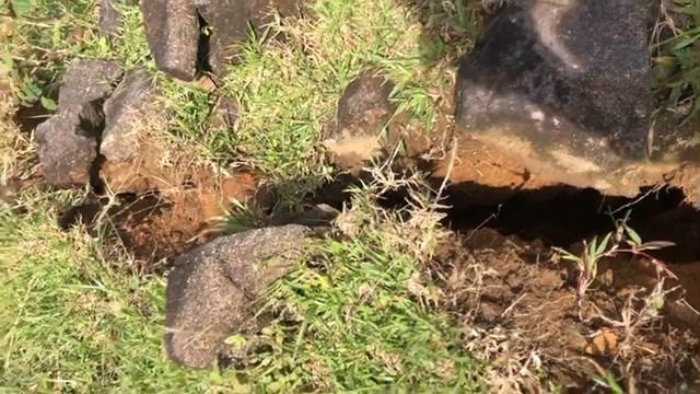 Xuất hiện vết nứt kéo dài 200 m từ đỉnh núi Tà Bang tiềm ẩn nguy cơ sạt lở núi. Nguồn: Báo Quảng Trị.