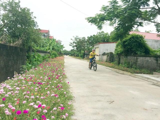 Đường hoa nông thôn mới ở huyện Kim Động, tỉnh Hưng Yên.