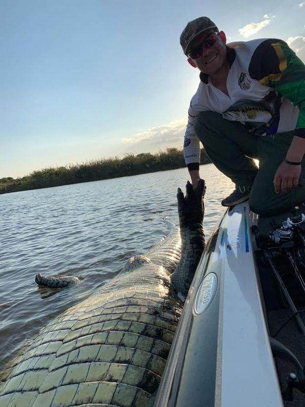 Ăn phải lưới của ngư dân, cá sấu khổng lồ toi đời - Ảnh 1