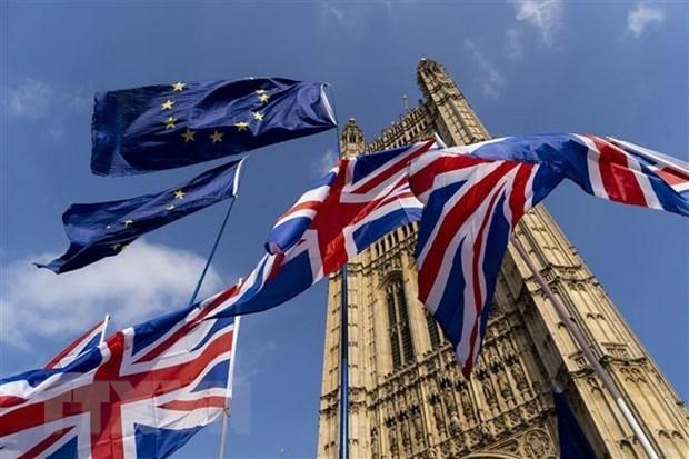 Đàm phán Brexit tạm hoãn do có thành viên mắc Covid-19 - Ảnh 1