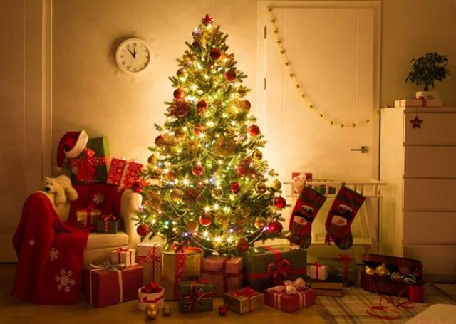 Những điều thú vị về Giáng sinh có thể bạn chưa biết? - Ảnh 1