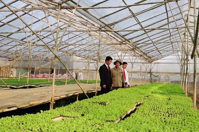 Agribank hành động vì màu xanh tương lai - Ảnh 1