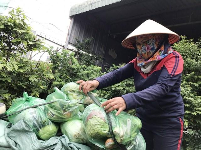 Những người mua ve chai như chị Thu không thể có rau từ siêu thị