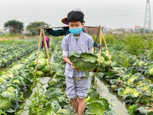 Phật tử nhí xuống tận ruộng hỗ trợ nông dân tiêu thụ nông sản.