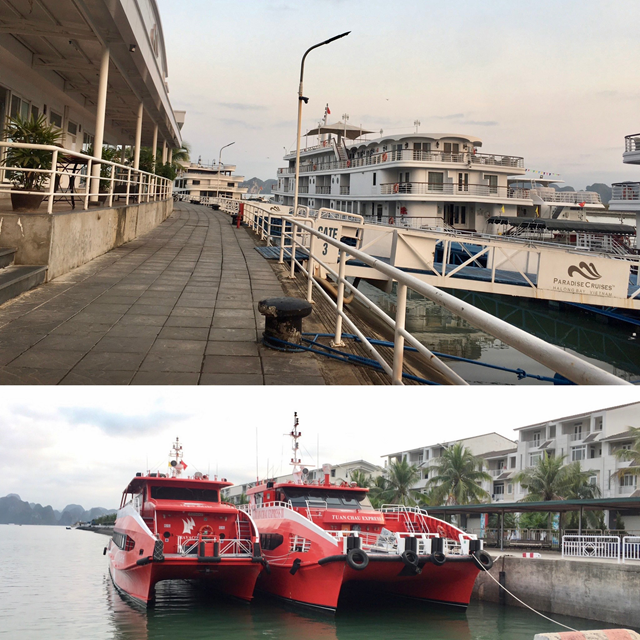 Tàu du lịch chạy tuyến Tuần Châu – Cô Tô vẫn chưa hoạt động trở lại.