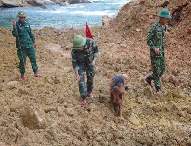 Ngoài ra các bộ phận khác vẫn tiếp tục tổ chức tìm kiếm các nạn nhân các khu vực có thể nghi ngờ. Ngoài ra, lực lượng Công binh tăng cường cảnh giới, có phương án an toàn cho lực lượng thi công.