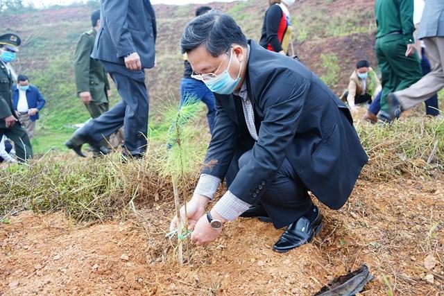 Chủ tịch UBND tỉnh Quảng Nam Lê Trí Thanh trồng cây.