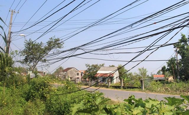 Nhiều dây điện sà xuống giống sát đất ở thôn Phú Qúy.