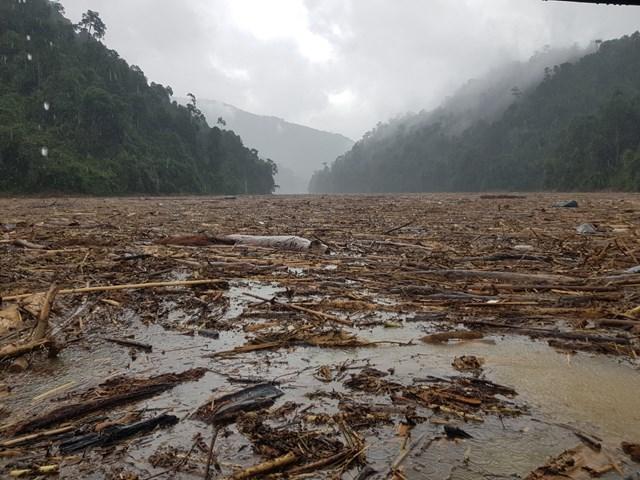 Quảng Nam: Còn 14 người mất tích trong vụ sạt lở núi ở Trà Leng - Ảnh 1