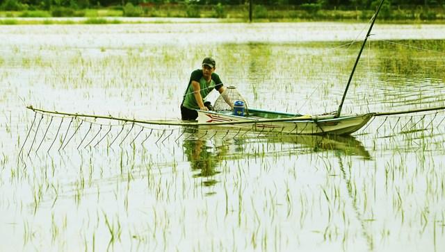 Ở miền Tây còn có ngư cụ đặc biệt là đẩy côn.