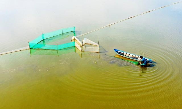 Các em bé cũng phụ gia đình kiểm tra dớn và thu hoạch cá tôm.