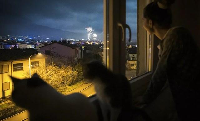 Một người phụ nữ Slovenia và những con mèo của cô ấy ngắm pháo hoa đêm giao thừa qua cửa sổ.