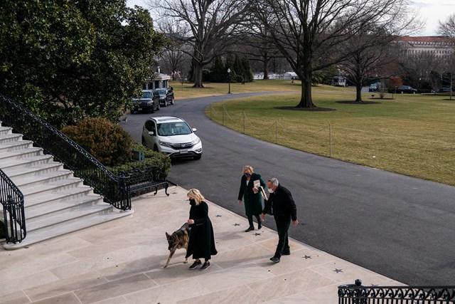 Đệ nhất phu nhânJill Biden dắt một trong hai chu chó đi dạo tại sân Nhà Trắng. Ảnh: Twitter.
