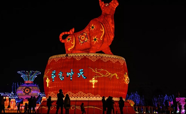 Đèn lồng hình con bò khổng lồ trong một công viên ở Vũ Hán, tỉnh Hồ Bắc, Trung Quốc.