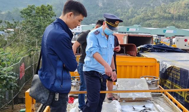 Trái chỉ đạo Thủ tướng, nhập khẩu cá tầm Trung Quốc 'bát nháo' giữa dịch Covid-19
