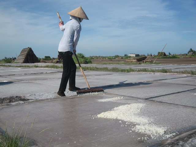 Từ nhiều đời nay, giáo dân xã Hải Chính (Hải Hậu, Nam Định) gắn bó với nghề làm muối.