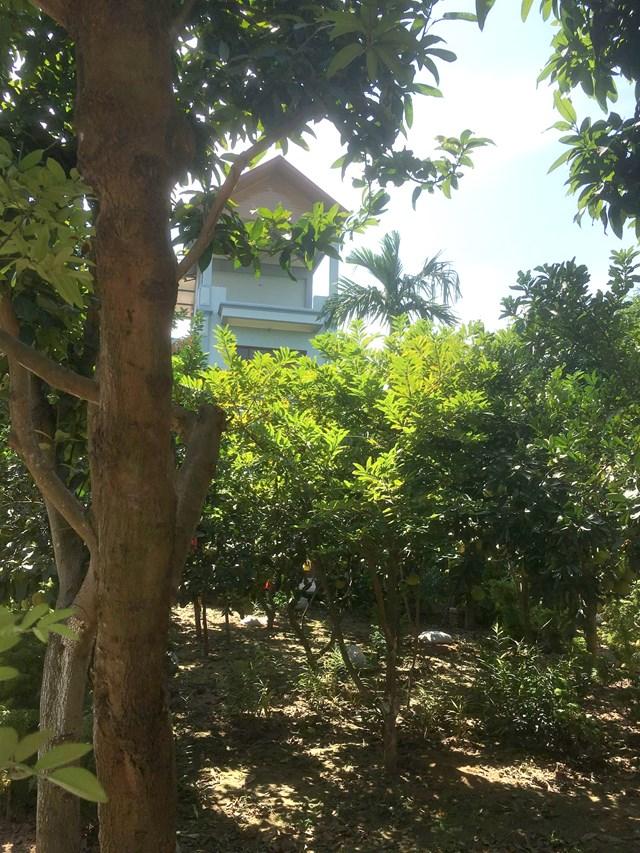Cổng vào khu đất ông Minh chiếm làm nhà ở.