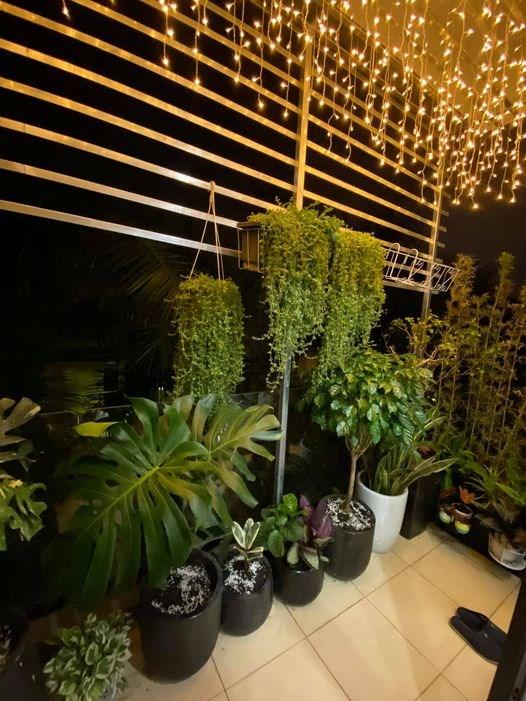 Diễn viên Hồng Đăng khoe công trình vườn nhà của hai vợ chồng, đây là nơi anh và vợ ngồi tâm sự mỗi cuối ngày dài làm việc.