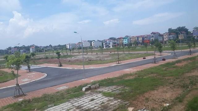 Đất dự án định phân lô.