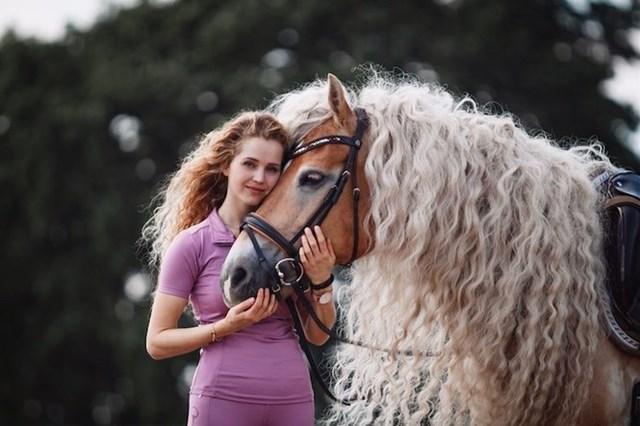 Chú ngựa thuộc giống Haflinger, hiện sống ở Hà Lan sở hữu một chiếc bườm xoăn dài tuyệt đẹp.