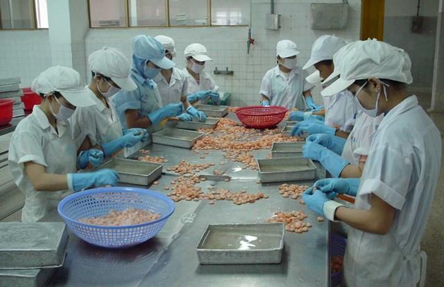 Doanh nghiệp chế biến thủy sản cần thêm cơ chế thích hợp để tăng cường năng lực sản xuất.